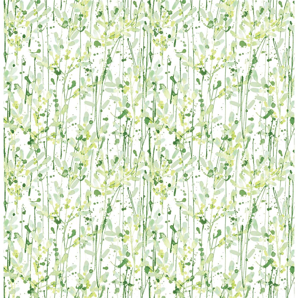 A-Street Prints by Brewster 2656-004056 Willow Green Leaves