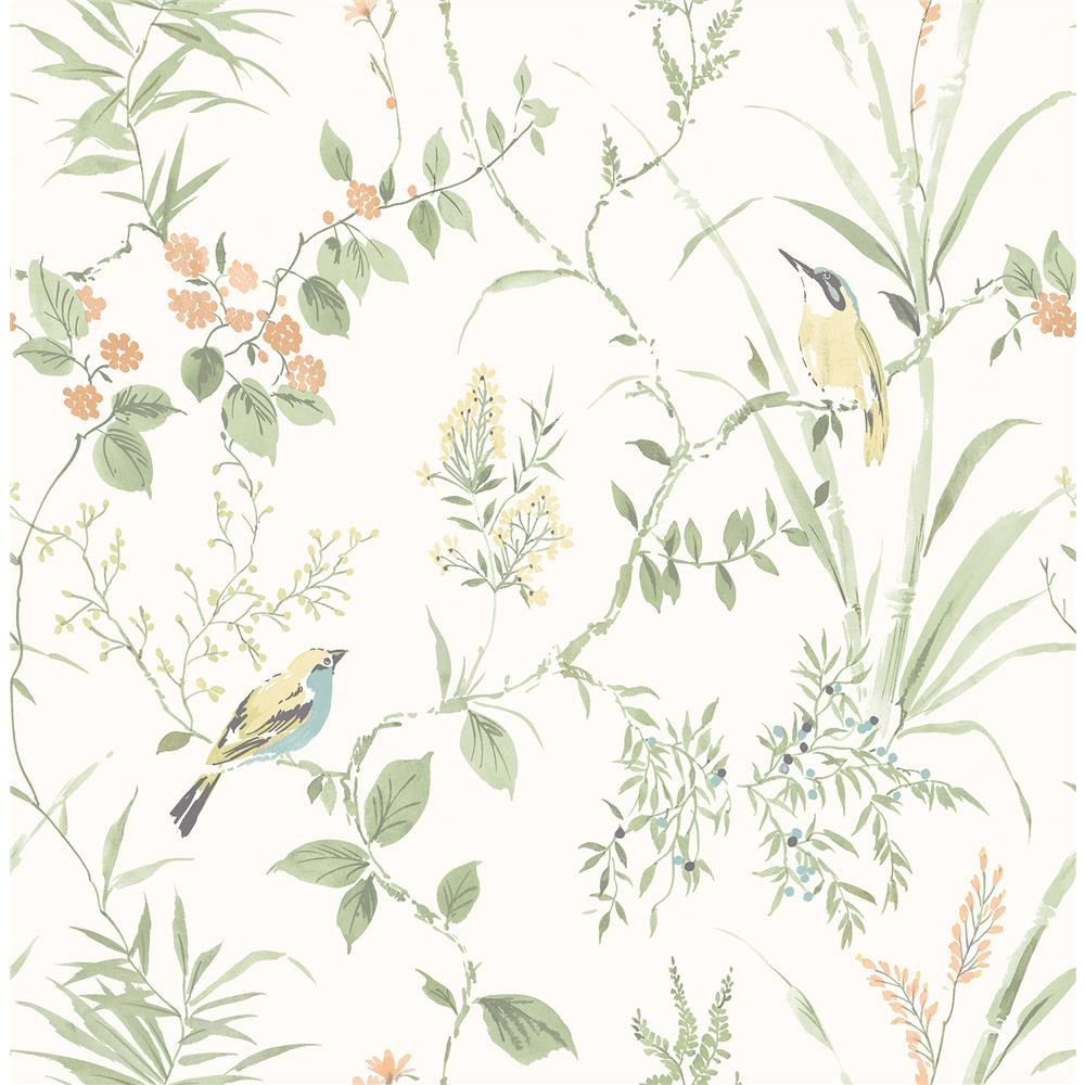 Brewster 2904-24174 Imperial Garden Sage Botanical Wallpaper