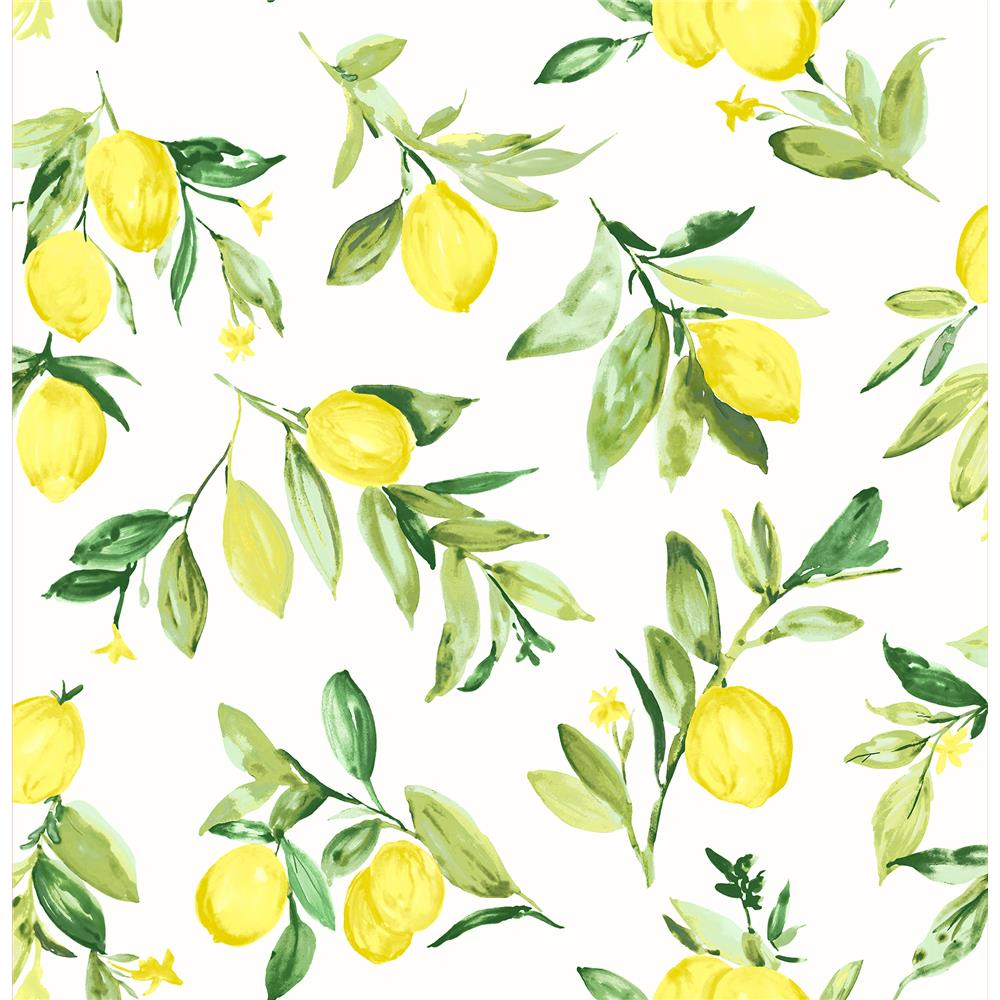 Brewster 2904-25686 Limon Chartreuse Fruit Wallpaper