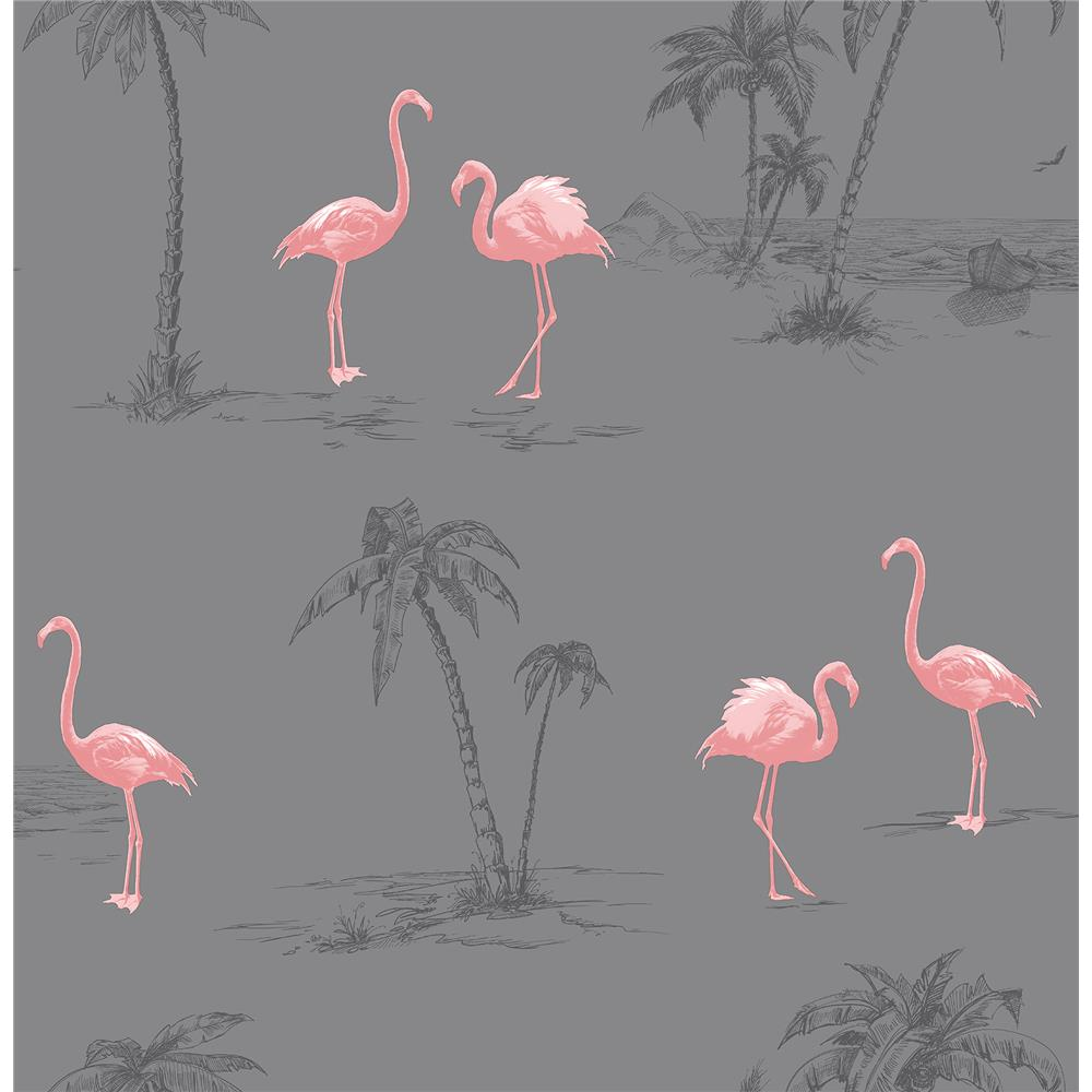Brewster 2904-41239SW Sanibel Taupe Flamingo Wallpaper