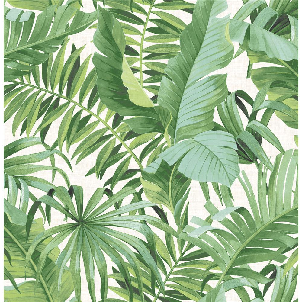 A-Street Prints by Brewster 2969-24136 Alfresco Green Tropical Palm Wallpaper