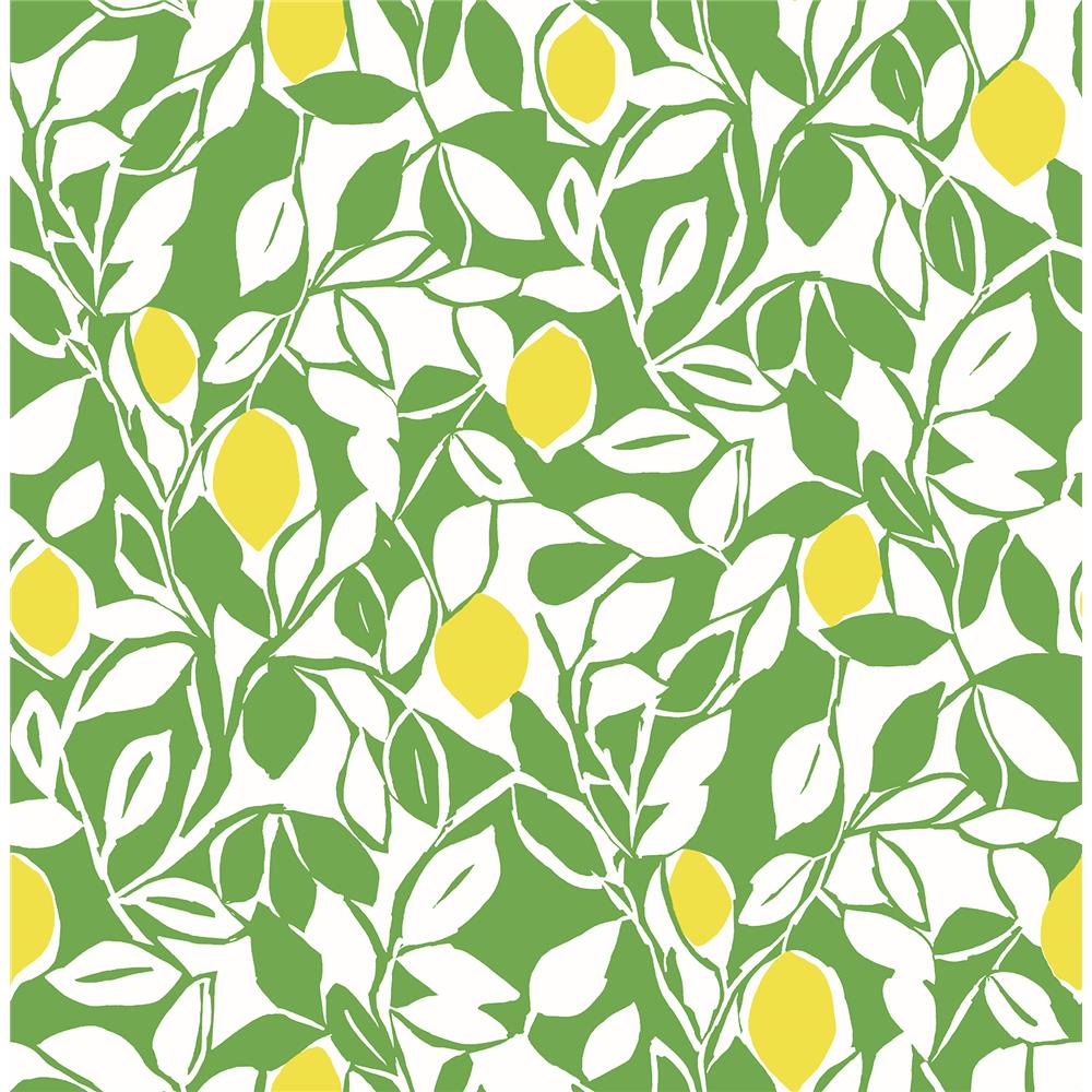 A-Street Prints by Brewster 2969-26023 Loretto Lime Citrus Wallpaper