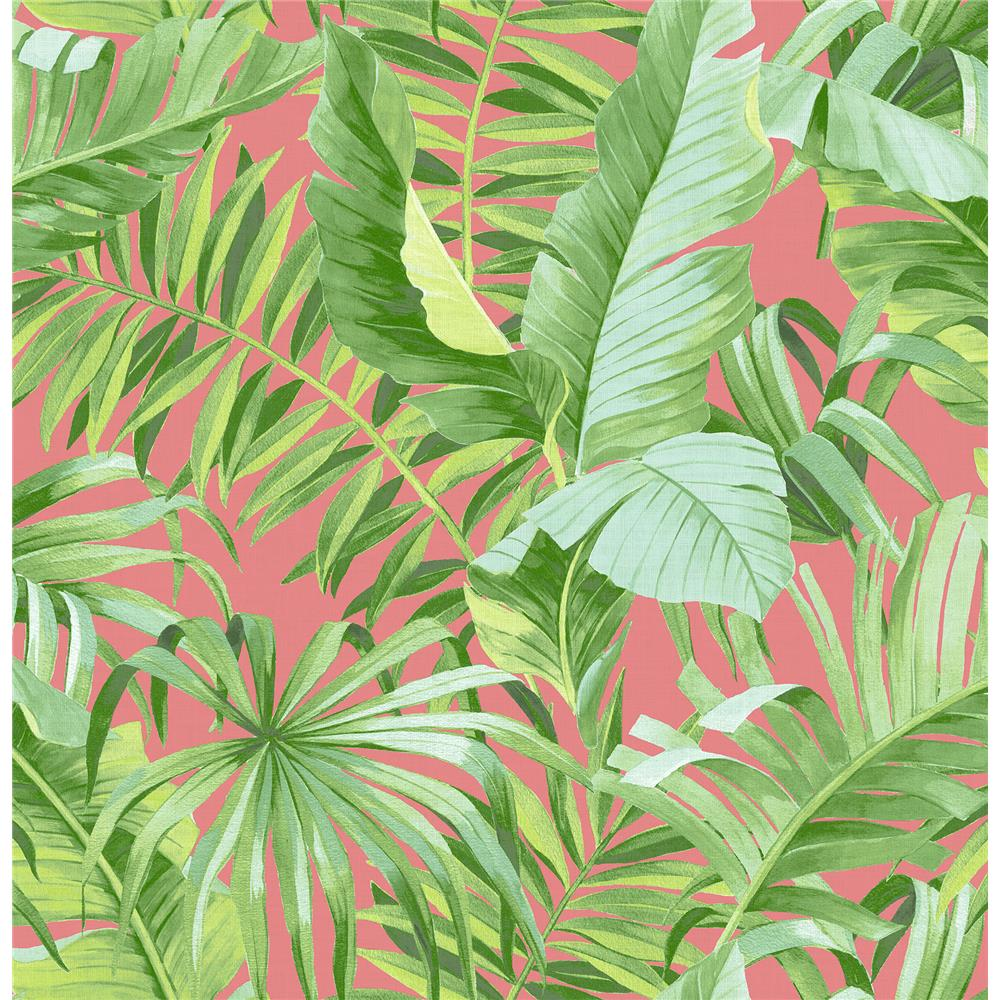 A-Street Prints by Brewster 2969-26055 Alfresco Coral Tropical Palm Wallpaper