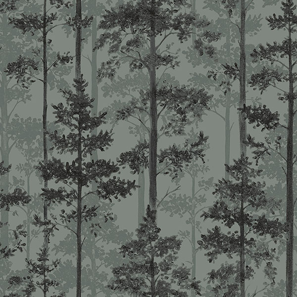 Engblad & Co by Brewster 8826 Pine Sage Silhouette Trees Wallpaper