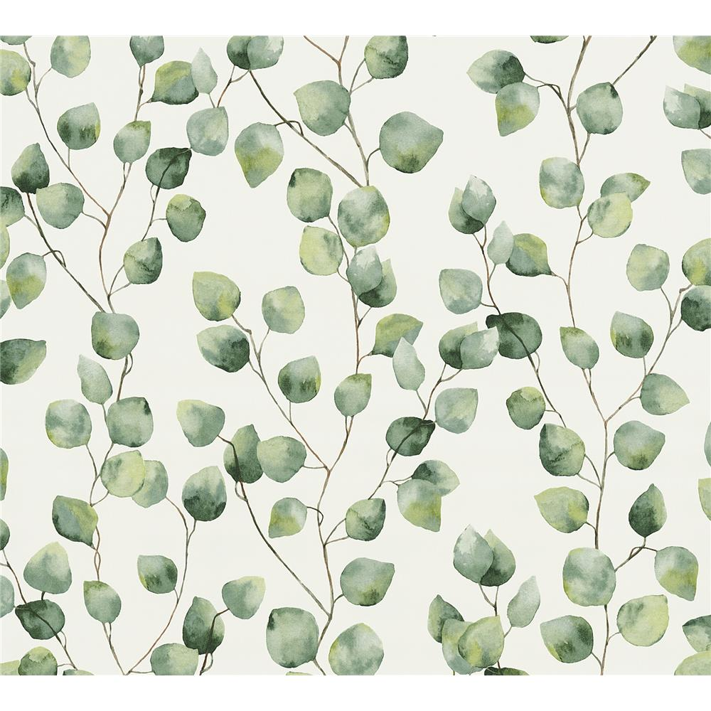 AS Creation by Brewster AS370441 Hedera Green Painterly Vine Wallpaper