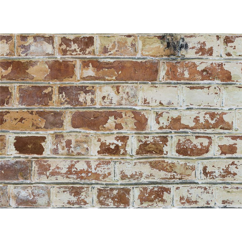 Home Decor Line by Brewster CR-67249 Home Decor Line Old Bricks Kitchen Panel