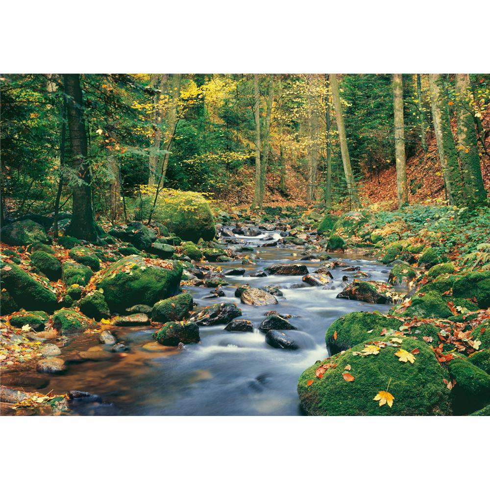Ideal Décor by Brewster DM278 Forest Stream Wall Mural