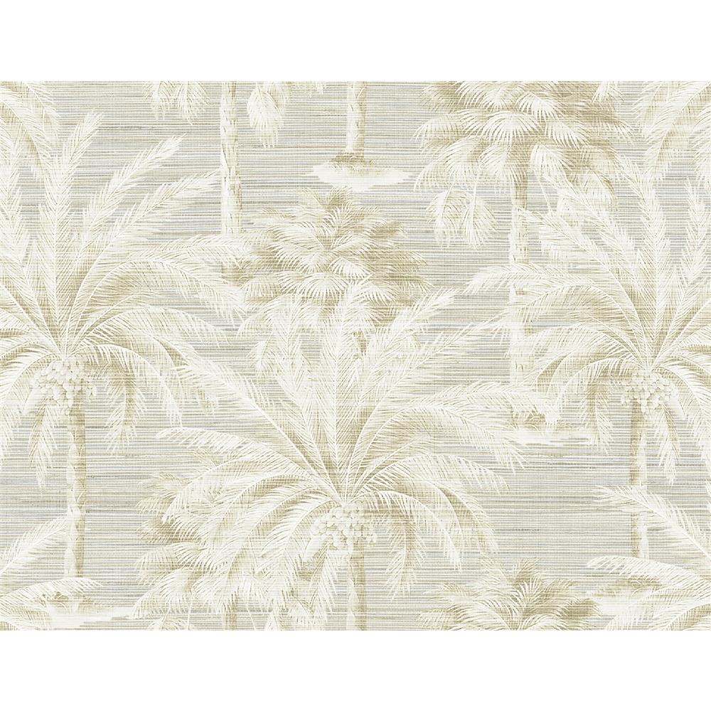 Kenneth James by Brewster PS40005 Palm Springs Dream Of Palm Trees Sand Texture Wallpaper