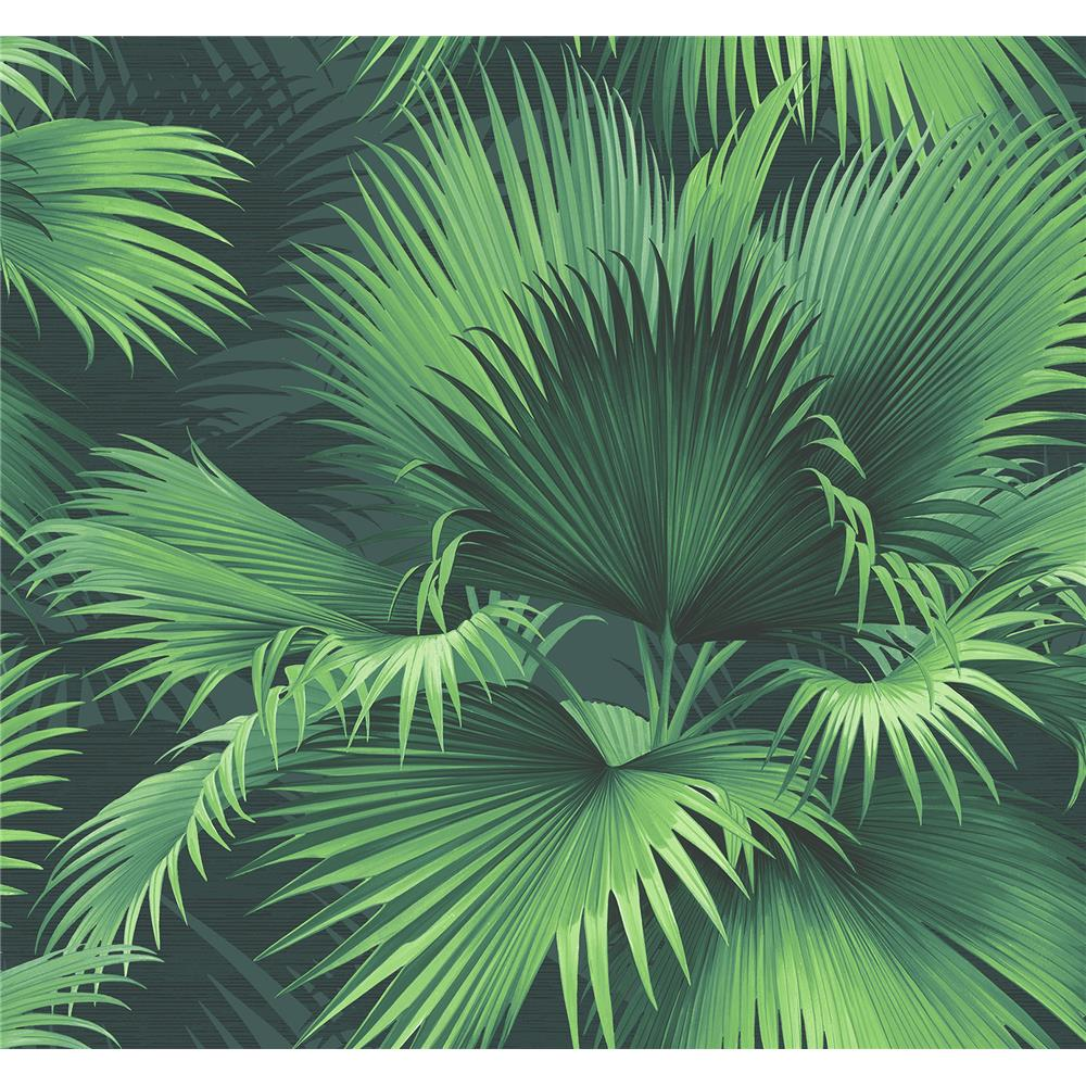Kenneth James by Brewster PS40104 Palm Springs Endless Summer Dark Green Palm Wallpaper