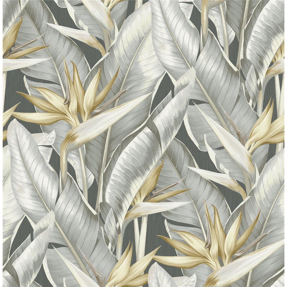 Kenneth James by Brewster PS40200 Palm Springs Arcadia Grey Banana Leaf Wallpaper