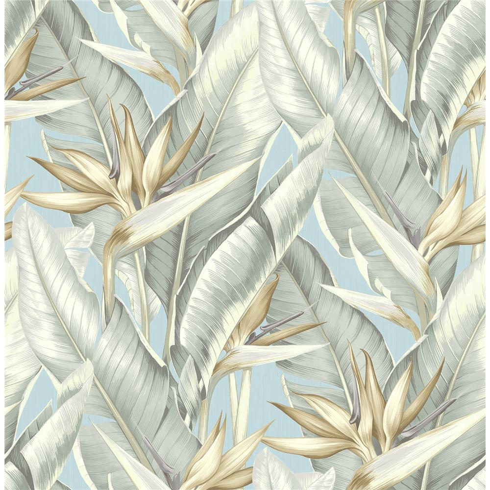 Kenneth James by Brewster PS40202 Palm Springs Arcadia Blueberry Banana Leaf Wallpaper