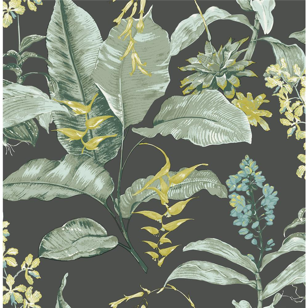 Kenneth James by Brewster PS41814 Palm Springs Maui Black Botanical Wallpaper