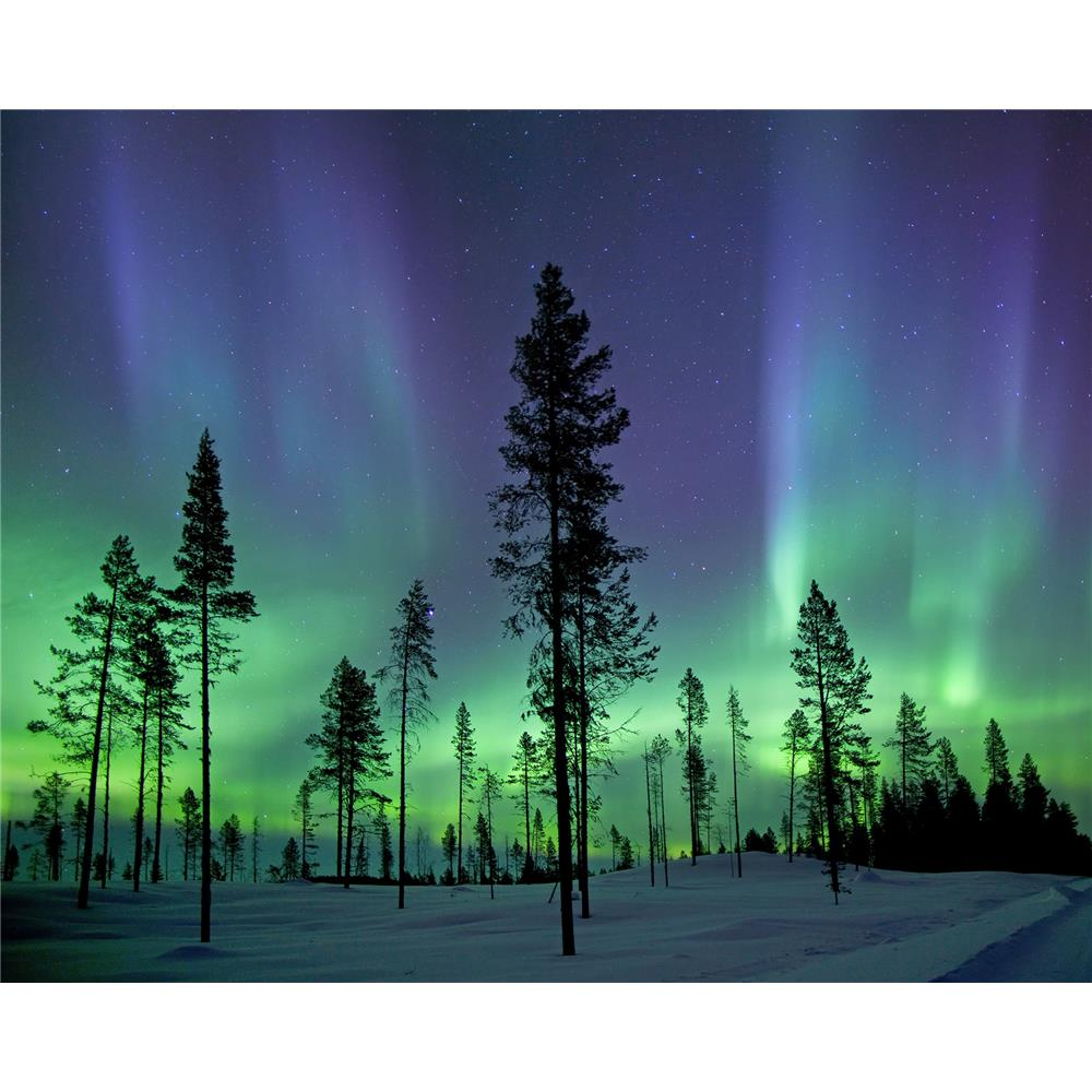 Wall Rogues by Brewster WR50512 Aurora Borealis/ Northern Lights Wall Mural