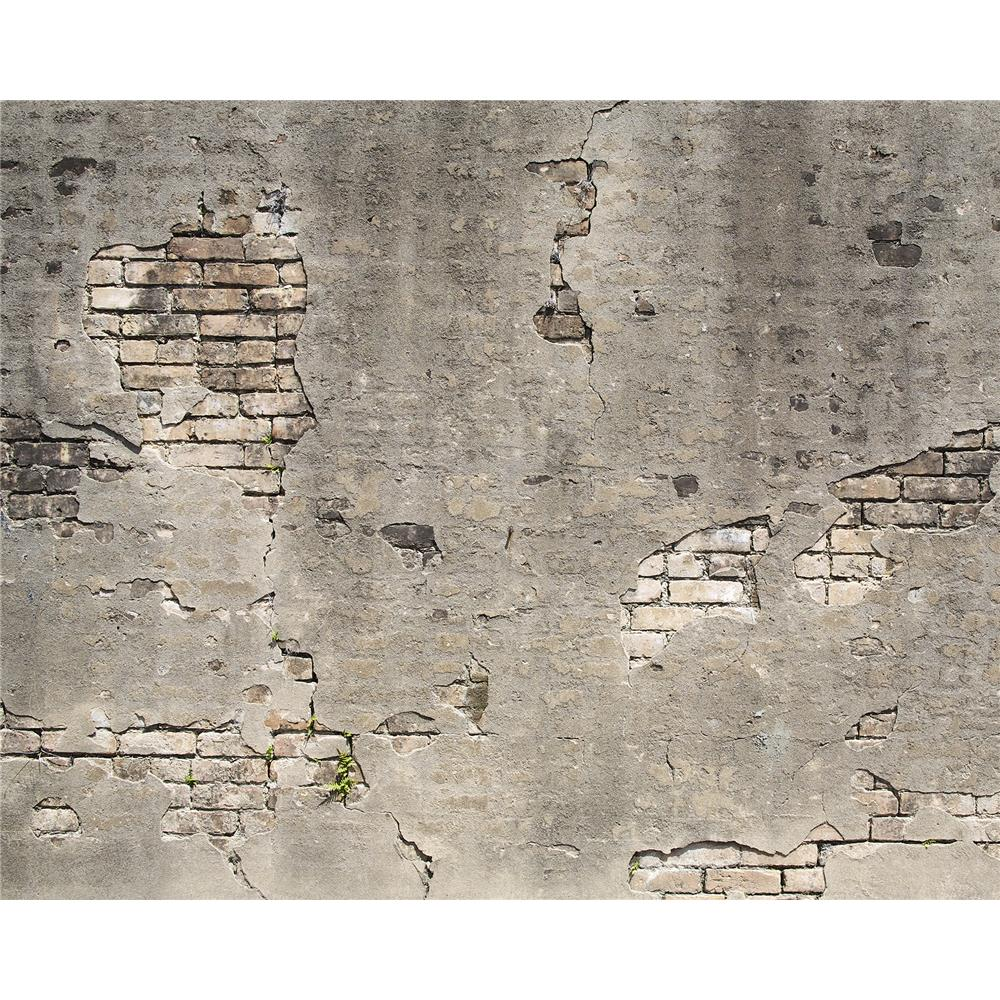 Wall Rogues by Brewster WR50520 Broken Concrete Wall Mural