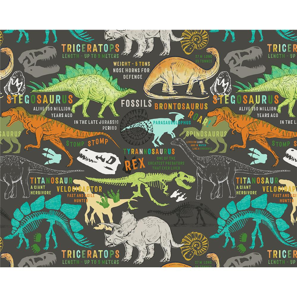 Brewster WR50587 Wall Rogues Dinosaurs Wall Mural