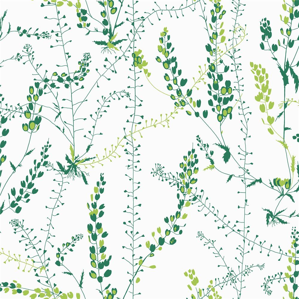 Wall Vision by Brewster WV1787 Bladranker Green Botanical Wallpaper