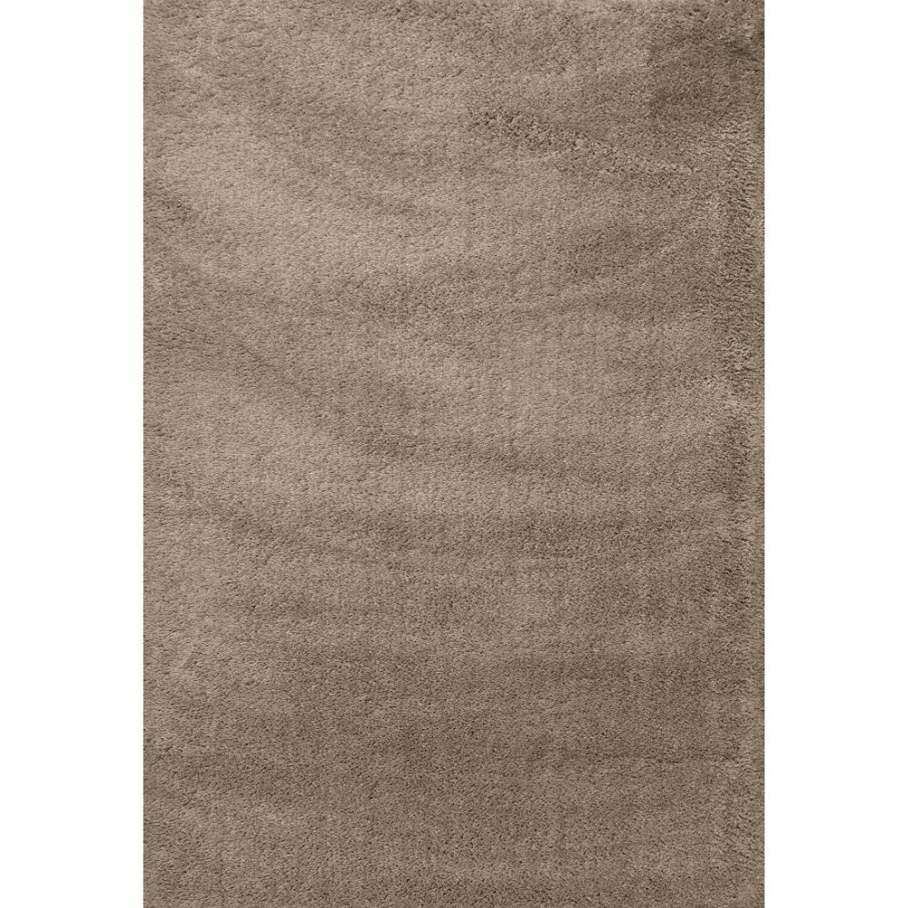 Dynamic Rugs 5900-115 Silky Shag 2 Ft. X 3 Ft. 3 In. Rectangle Rug in Beige