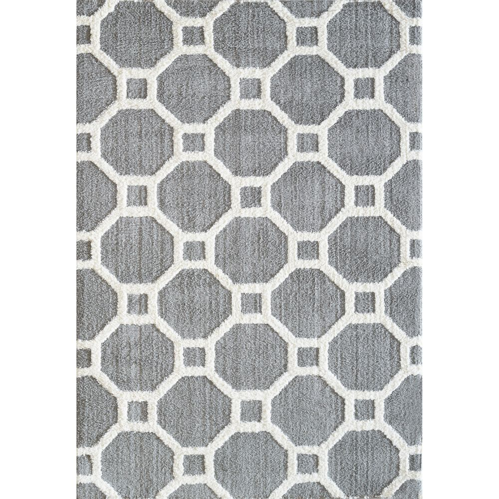 Dynamic Rugs 5903 901 Silky Shag 2 Ft. X 3 Ft. 3 In. Rectangle Rug in Silver/White