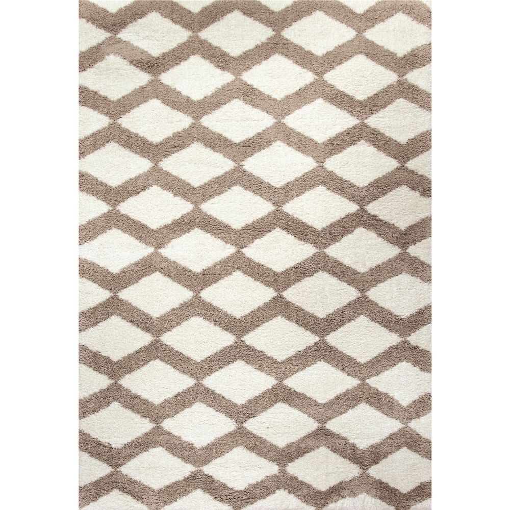 Dynamic Rugs 5904-111 Silky Shag 2 Ft. X 3 Ft. 3 In. Rectangle Rug in White