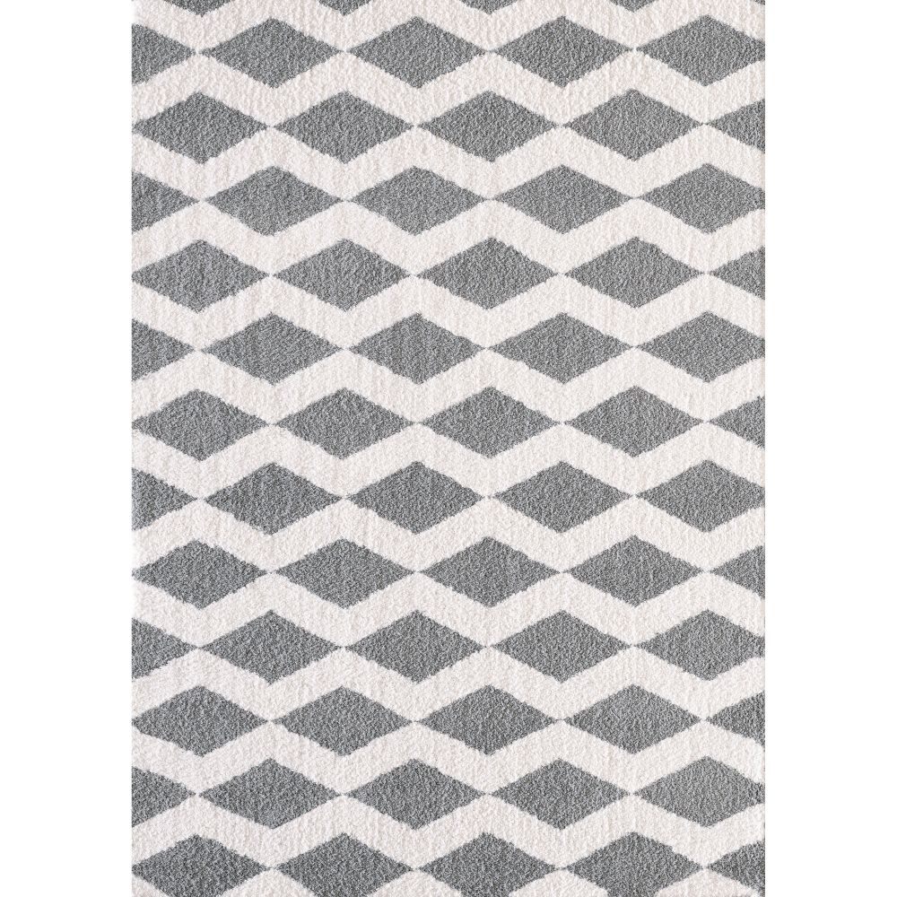 Dynamic Rugs 5904 119 Silky Shag 2 Ft. X 3 Ft. 3 In. Rectangle Rug in White/Silver