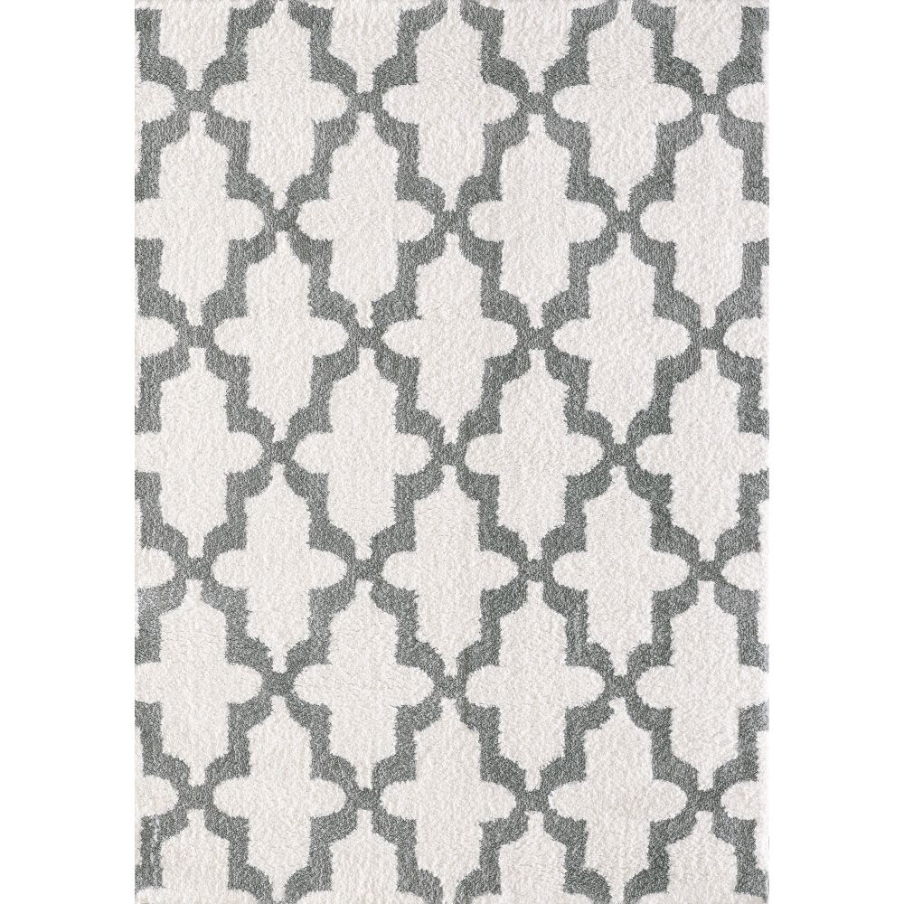 Dynamic Rugs 5906 110 Silky Shag 2 Ft. X 3 Ft. 3 In. Rectangle Rug in White/Silver