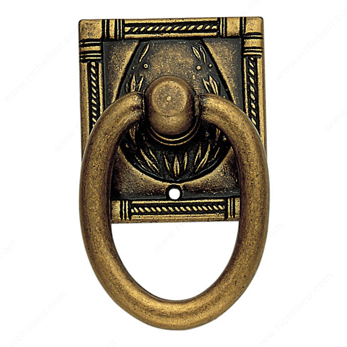 Richelieu Hardware 12323167 Art Deco Collection Brass Ring Pull - 123 in Floral Brass