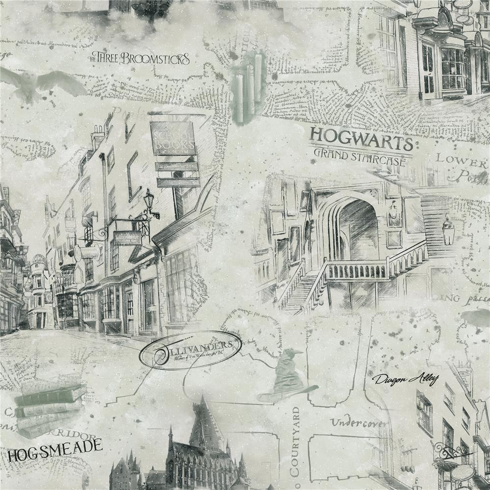 RoomMates by York RMK11261RL Harry Potter Map Peel & Stick Wallpaper
